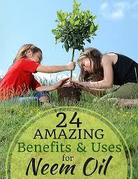 amazing benefits and uses of neem oil for plants benefits and uses for neem oil in the garden