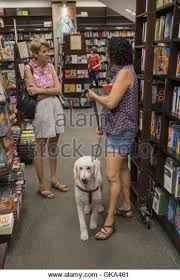 two women chat in a barnes noble bookstore in park slope brooklyn gka461