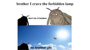 Brother I Crave The Forbidden Lamp Dont Do It Brother No Brøther