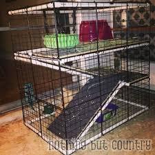 diy rabbit bunny cage for