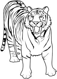 Small Picture Tiger Coloring Page To Print anfukco