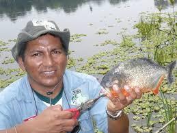 amazon river piranha. Perfect Amazon Fishing For Piranhas And Bass In Peruu0027s Amazon River With Piranha E