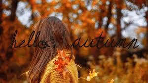 tumblr fall vibes autumn gif