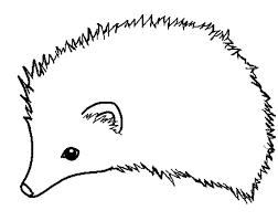 Small Picture How to Draw Hedgehog Coloring Pages Coloring Sun