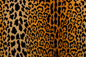 Animal Prints Leopard Print Fabric By The Yard Animal Prints Fabric The