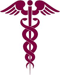 Image result for Pre-Med