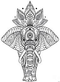 Floral Mandalas Coloring Pages Free At Mandala Bitsliceme
