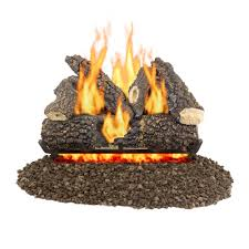 pleasant hearth arlington ash 24 in vented gas log set
