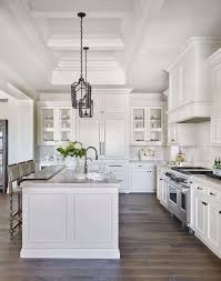 Kitchens With Grey Cabinets Custom Cabinets 48 Fresh Cabinets Com Ideas Perfect Cabinets Com Lovely