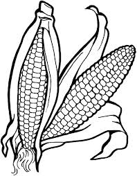 Small Picture corn coloring pages vonsurroquen