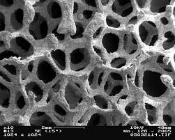 File Image Metal Foam In Scanning Electron Microscope Magnification