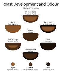 Light Vs Dark Roast Roast Development And Colour Barista Hustle