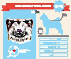 Akita Inu Dog Breed Vector Stock Vectors And Illustrations