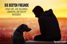 Die Besten Freunde Hund Und Mensch Sprüche Suche
