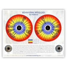 Free Iris Positions Chart Behavioral Iridology