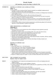 Technical Support Lead Resume Samples Velvet Jobs
