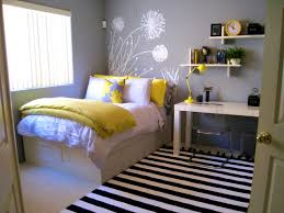 bedroomeasy on the eye teenage bedroom color schemes pictures options ideas home paint for bedrooms rmsdodi bedroomeasy eye