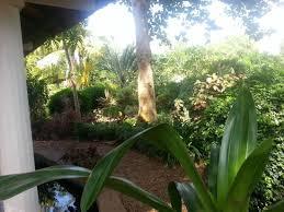 guest house from garden