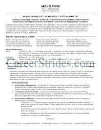 It Business Analyst Resume Inspiration Financial Systems Analyst Resume Samples Examples For Business