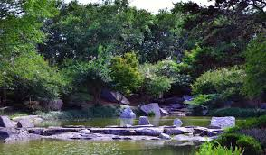 rock pathways over the water in the japanese garden photo justin ins