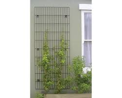 Small Picture Secret Garden Collection Trellis Metal Trellis Jacksons Fencing
