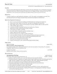Sample Web Developer Resume Resume For Your Job Application