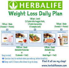 healthy snack ideas for weight loss nz. herbalife weight loss daily meal plan- what i like telling my clients is to get their shakes over and done with by lunch time so they dont spend the rest of healthy snack ideas for nz