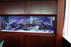 aquarium for office. ceou0027s office aquarium for h