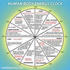 Tcm Organ Clock Chart