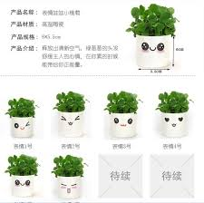small office plant. Wholesale DIY Mini Plant Small Office Desktop Expression Grass Head Doll Potted Gift Ideas-in Garment Steamer Parts From Home Appliances On O