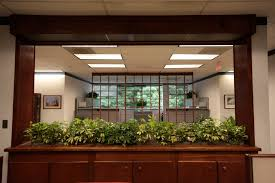 interior office plants. growing expectations is well aware of the reaction people in offices have to indoor plants interior office