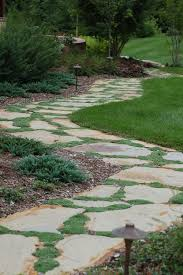 Flagstone pathway with thyme