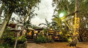 Treehouse Palm Beach  Holiday Accommodation Palm Beach NSWTreehouse Accommodation Nsw