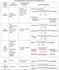 Vitamin Classification Chart Types Of Vitamins Water Soluble And Fat Soluble Vitamins