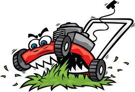 Image result for Lawn Mowing Business