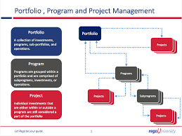 project management quick reference guide regoxchange projects vs programs vs portfolios ca ppm qrc