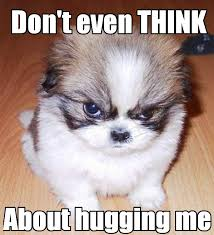 hug – FUNNY MEMES via Relatably.com