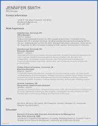 Microsoft Resume Best Ms Word 2007 Resume Template Kidsafefilms