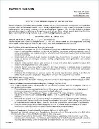 Sales Manager Resume Sample Best of Regional Sales Manager Resume Senior Executive Resume Template
