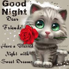 goodnight dear friends
