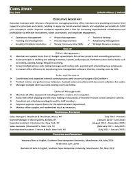 Executive Style Resume Template Executive Style Resume Template Marketing Landscape Design