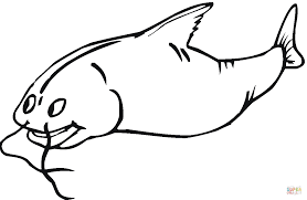 Small Picture Catfish 7 coloring page Free Printable Coloring Pages