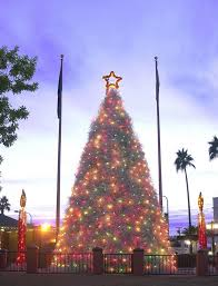 Downtown Chandler Christmas Tree Lighting Tumbleweed Christmas Tree Desert Style Chandler Arizona