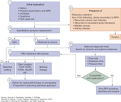 Pathophysiology Of Pyelonephritis In Flow Chart Urologic Disorders Current Medical Diagnosis Treatment