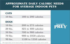 dog cat caloric need chart ideally your pet should lose weight