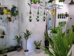 chris bottle crafters indoor home garden u get all indoor garden decoration plants pots