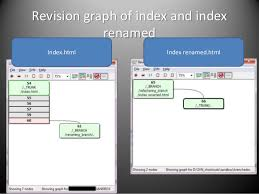 Subversion proper renaming and merging as if you've read the whole co…