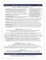 wireless consultant resumes winning sales resume examples resume sample for a sales executive