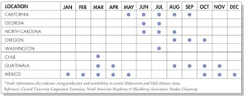 Blackberry Ripening Chart Blackberries Produce Blue Book