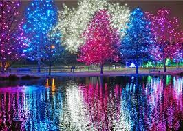 Zoo Lights Colorado Parade Of Lights Zoo Lights Denver Christmas Lights